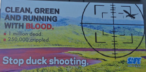 SAFE's anti duckshooting billboard